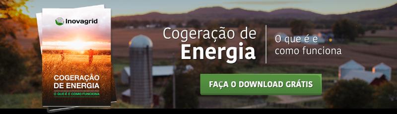 IG_CTA_Whitepaper_Cogeracao